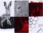 Hasenrot, 2017, Collage, 16x21 cm